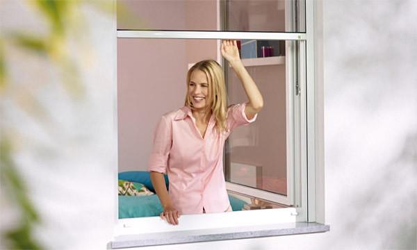 rollo f r fenster insektenschutzgitter insekten und. Black Bedroom Furniture Sets. Home Design Ideas